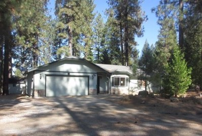 7039 Pioneer Drive, Grizzly Flats, CA 95636 - MLS#: 18077000