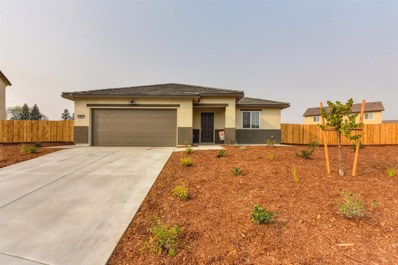 1091 Sierra Bluff St, Plumas Lake, CA 95961 - MLS#: 18077150