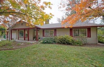 3332 Big Cut Road, Placerville, CA 95667 - #: 18077152
