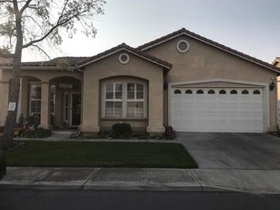 113 Little Johns Creek Drive, Oakdale, CA 95361 - MLS#: 18077554
