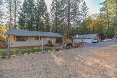 25984 Ridge Drive, Pioneer, CA 95666 - MLS#: 18078427