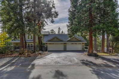 25468 Madrone Court, Volcano, CA 95689 - MLS#: 18078532