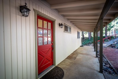 28056 Holiday Ln, Pioneer, CA 95666 - MLS#: 18078551