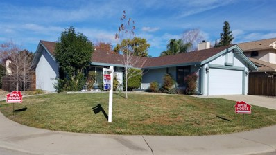 6901 Autumn Grove Way, Elk Grove, CA 95758 - MLS#: 18078961