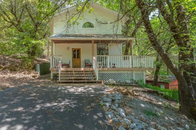14231 Pine Grove Volcano Road, Pine Grove, CA 95665 - MLS#: 18079105
