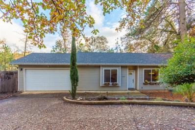 1320 Village Lane, Placerville, CA 95667 - MLS#: 18079531