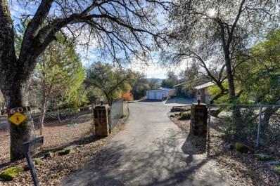 2601 Deer Brush Lane, Shingle Springs, CA 95682 - MLS#: 18079695