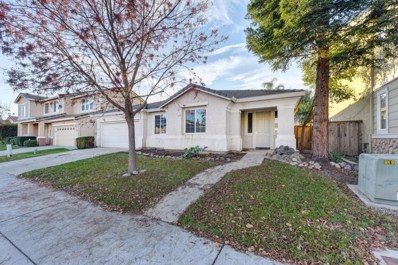 3253 Spinning Rod Way, Sacramento, CA 95833 - MLS#: 18080829