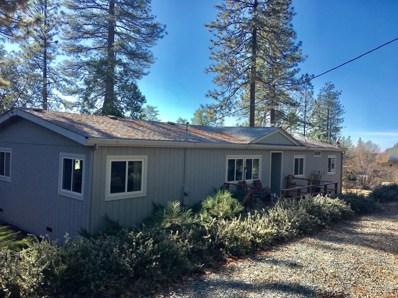 22840 Alaire Lane, Pioneer, CA 95666 - MLS#: 18081095