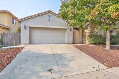 5555 Jerry Litell Way, Sacramento, CA 95835 - #: 18081539
