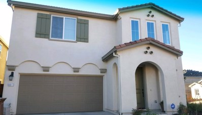 9817 Carico Way, Elk Grove, CA 95757 - #: 18082600