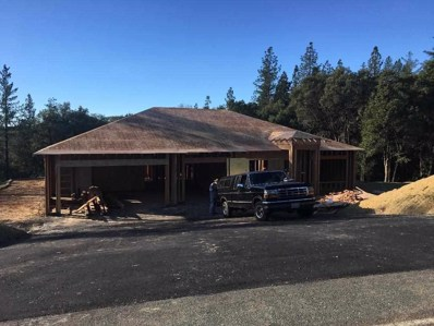 19010 Mineral Ridge Court, Pine Grove, CA 95665 - MLS#: 18600058