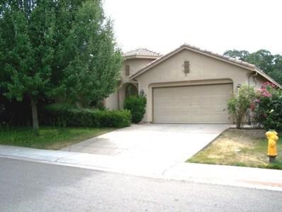 220 Ashworth Drive, Ione, CA 95640 - MLS#: 18600122