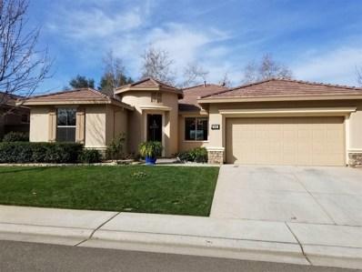 381 Castle Oaks Drive, Ione, CA 95640 - MLS#: 18600212