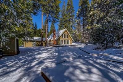 26306 Sugar Pine Drive, Pioneer, CA 95666 - MLS#: 18600302