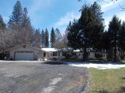 21908 Highway 26, West Point, CA 95255 - MLS#: 18600381