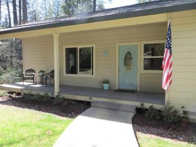 12943 Country Court, Pine Grove, CA 95665 - MLS#: 18600406