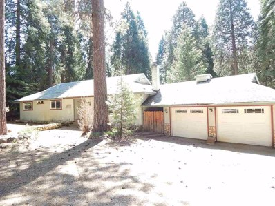 27300 Woodland Road, Pioneer, CA 95666 - MLS#: 18600407