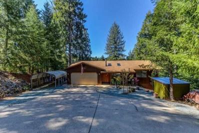 25494 Meadow Drive, Pioneer, CA 95666 - MLS#: 18600508