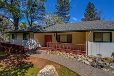 24040 Woodfern Drive, Pioneer, CA 95666 - MLS#: 18600525