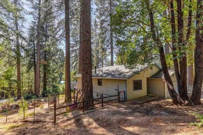 17940 Timber Court, Pioneer, CA 95666 - MLS#: 18600590