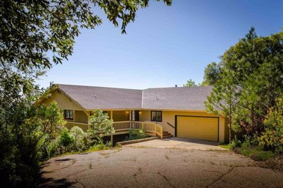 12931 Spagnoli Mine Road, Pine Grove, CA 95665 - MLS#: 18600604