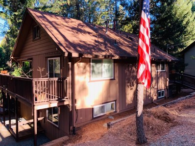 25739 Sugar Pine Drive, Pioneer, CA 95666 - MLS#: 19001417