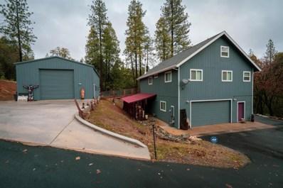 19121 Mineral Ridge Court, Pine Grove, CA 95665 - MLS#: 19001804