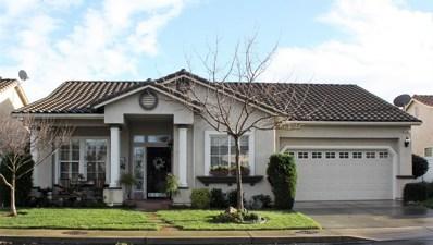 1349 Table Mountain Drive, Oakdale, CA 95361 - #: 19002536