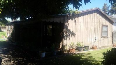 19958 Echo Street, Hilmar, CA 95324 - MLS#: 19002760