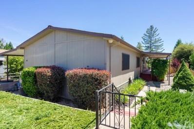14074 Irishtown Road UNIT 58, Pine Grove, CA 95665 - MLS#: 19003159