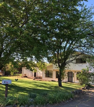 4280 E Grannys Lane, Shingle Springs, CA 95682 - #: 19003213