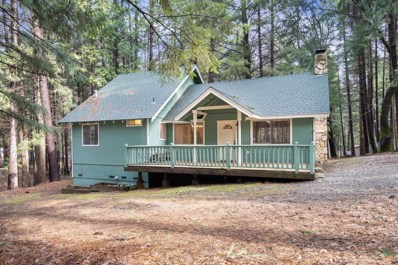 5510 Poppy Road, Pollock Pines, CA 95726 - #: 19003451