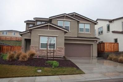 21178 Grapevine Drive, Patterson, CA 95363 - MLS#: 19003916