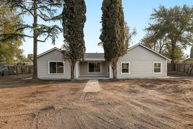 430 E Watters Road, French Camp, CA 95231 - MLS#: 19005322
