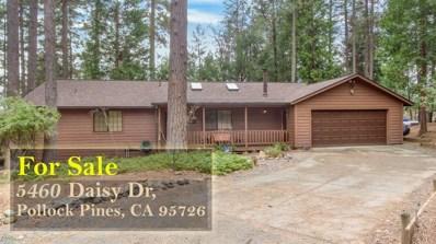 5460 Daisy Drive, Pollock Pines, CA 95726 - #: 19005329
