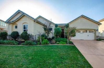 10046 Winkle Circle, Elk Grove, CA 95757 - #: 19006915