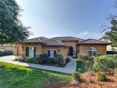 1206 Terracina Drive, El Dorado Hills, CA 95762 - #: 19007438