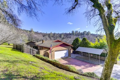 5680 Dragon Springs Road, Placerville, CA 95667 - #: 19008740