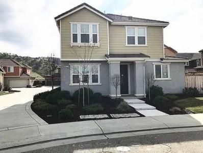 9427 Vintner Circle, Patterson, CA 95363 - MLS#: 19008794