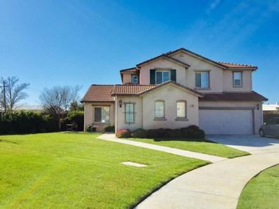 209 Honeybell Court, Los Banos, CA 93635 - MLS#: 19009772