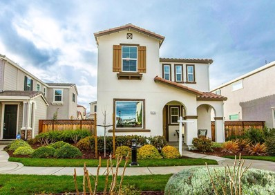 970 S Langford Drive, Mountain House, CA 95391 - MLS#: 19010546