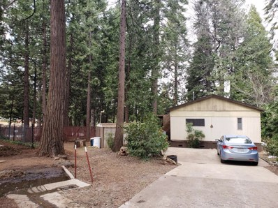 6165 Pony Express Trail UNIT 43, Pollock Pines, CA 95726 - #: 19016769