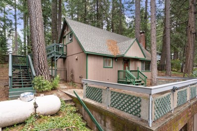 3393 Sly Park Road, Pollock Pines, CA 95726 - #: 19017578