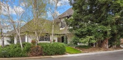 101 Rivergate Place, Lodi, CA 95240 - MLS#: 19017747
