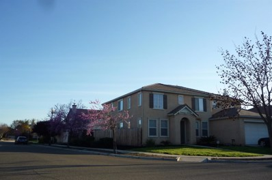 1430 Toggenberg Street, Patterson, CA 95363 - MLS#: 19018606