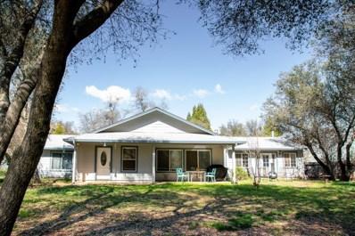 3816 Crosswood Drive, Shingle Springs, CA 95682 - #: 19018659