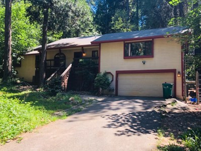 6504 Misery Lane, Pollock Pines, CA 95726 - #: 19020808