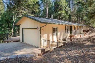 5689 Sierra Springs, Pollock Pines, CA 95726 - #: 19021667
