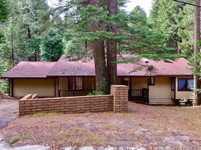 3364 Gold Ridge Trail, Pollock Pines, CA 95726 - #: 19021687
